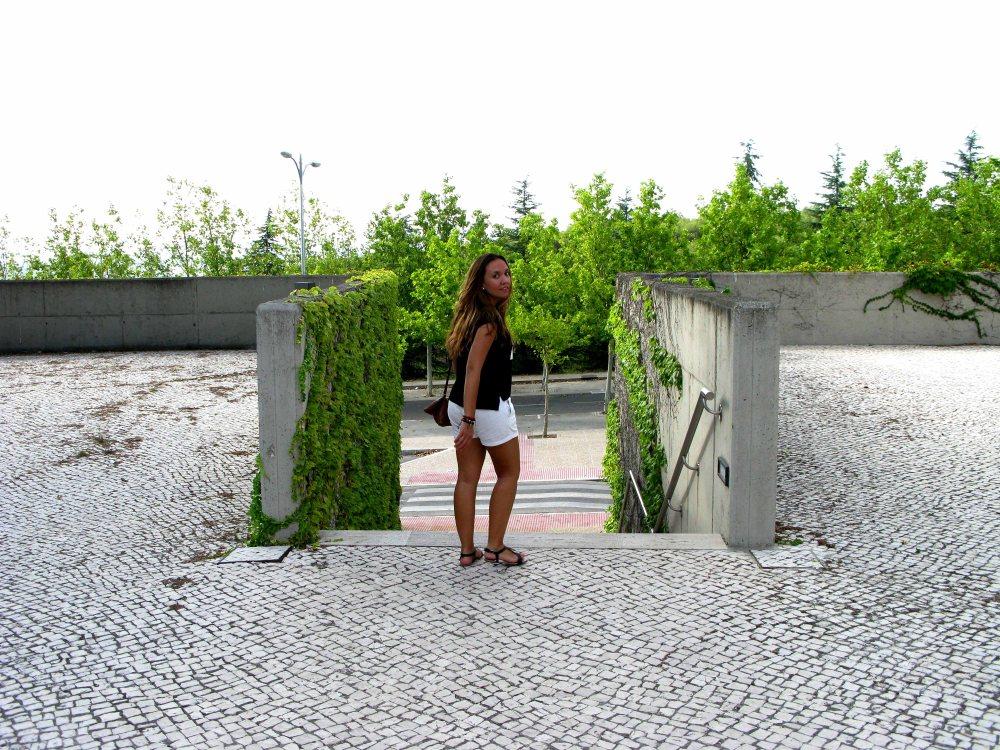 IMG_8236